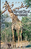 Rocky and the Lost City of the Kalahari